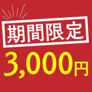 期間限定3000円コース